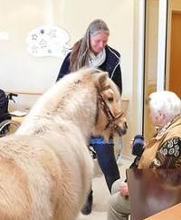 Tiere helfen Menschen